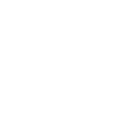 Thai Room Logo